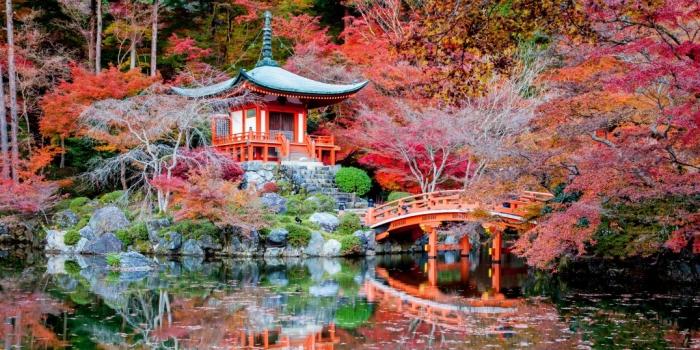 Самые романтические места Японии